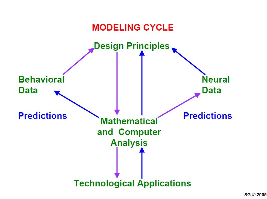 Professor Grossberg Modeling Suite